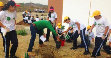 sembrando3 390x205 - Segunda fase: Plan verde La Joya