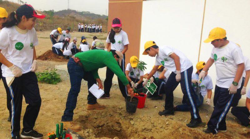 sembrando3 800x445 - Segunda fase: Plan verde La Joya