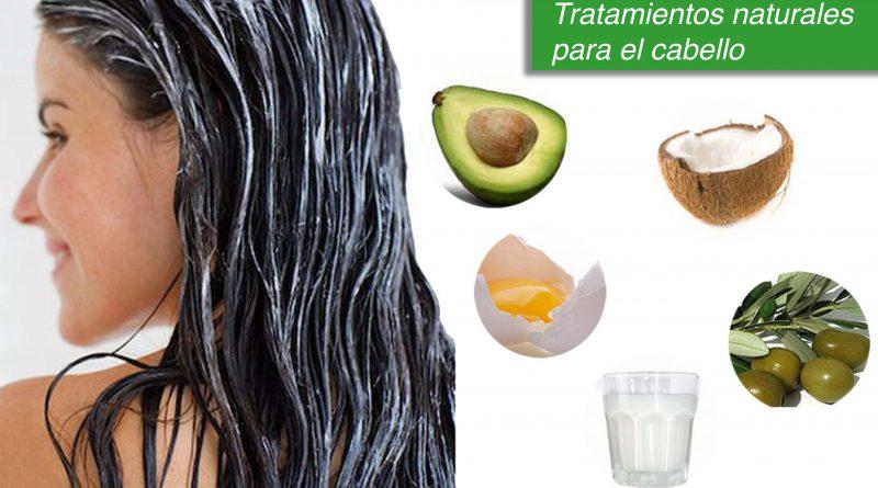BLOG LJ2 06 1 800x445 - Tratamientos naturales para el cabello